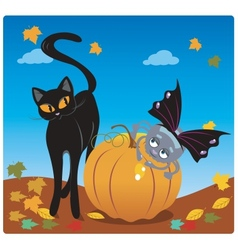 Spider and a Cat vector image