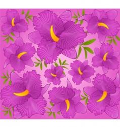 Tropical hibiscus vector