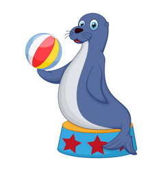 cute circus seal playing a ball vector image