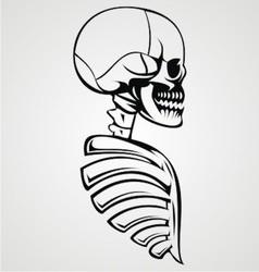 Skull Draw vector image vector image