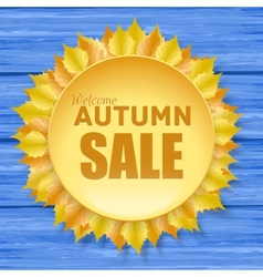 Beautiful autumn sale frame with yellow leaves vector image