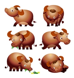 Cute buffalo cartoon vector