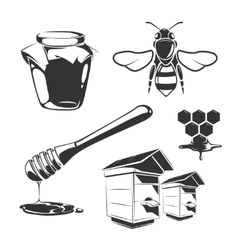 Elements for honey vintage labels vector