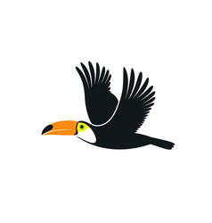 Flying toucan vector