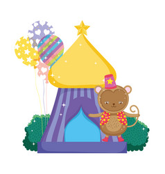 funny circus monkey with hat in tent vector image