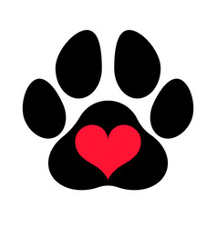 Paw print love vector