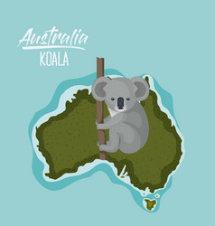 poster koala in australia map in green surrounded vector image