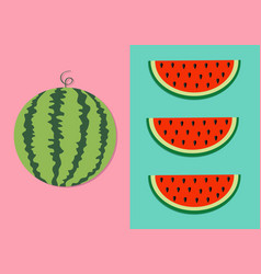 watermelon fruit icon set round water melon red vector image