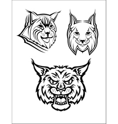 Wild bobcat or lynx mascots vector image