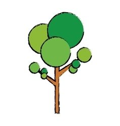 isolated natural tree vector image vector image