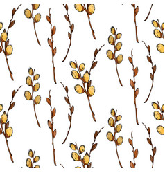watercolor pussy-willow seamless pattern vector image vector image