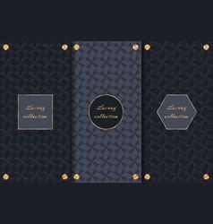 set of luxury backgrounds vector image vector image