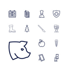 13 graphic icons vector