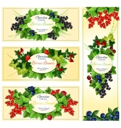 Berry banner set with fruit and leaf frames vector image vector image