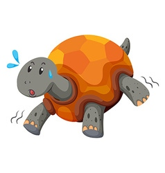 Cute turtle running with swet vector