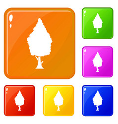 Cypress icons set color vector