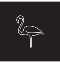 Flamingo sketch icon vector image