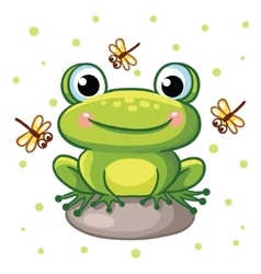 frog on a rock vector image