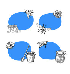 set of stickers with hand drawn honey vector image