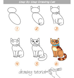 step by step drawing cat vector image