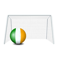 A ball near the net with the Ireland Flag vector image