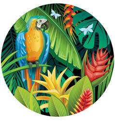 background with tropical jungle plants and parrot vector image