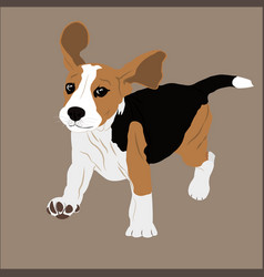 beagle image puppy dog vector image