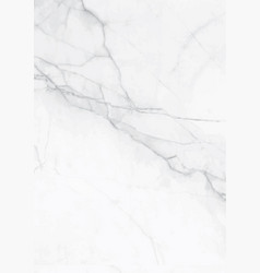Elegance white marble gray textured surface paper vector