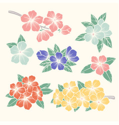 Flowers set colorful floral collection with vector