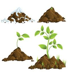 Plants growing vector