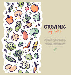 seamless vertical vegan pattern with vegetables vector image