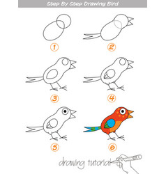 step by step drawing bird vector image