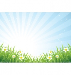spring meadow beautiful vector image vector image