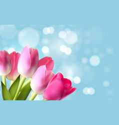 spring and summer flower natural background vector image