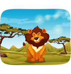 a lion in the nature vector image