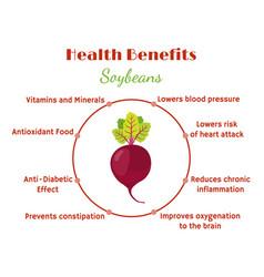 Beetroot benefits - organic vegetarian nutrition vector