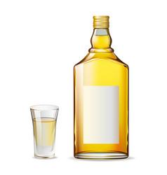 bottle-glass-tequila vector image