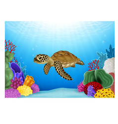 Cartoon of Turtle with beautiful underwater vector image