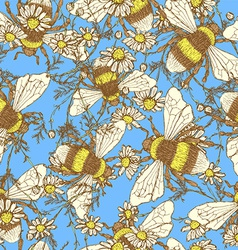 Daisy flower and bees vector