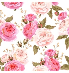 English roses seamless vector image