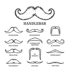 isolated silhouette moustache collection vector image