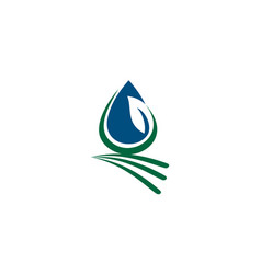 leaf water landscape vector image