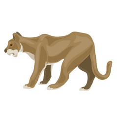 Lioness icon cartoon style vector