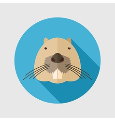 Otter beaver flat icon Animal head vector