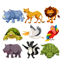 Set animals pack vector