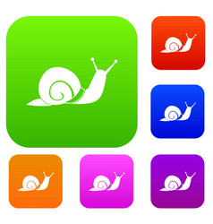 snail set collection vector image