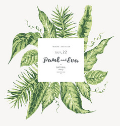 template card green tropical leaves vector image