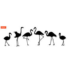 set of silhouettes of flamingo birds vector image vector image