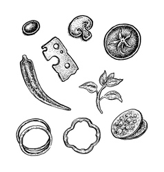Set of hand drawn vintage sketchy style pizza vector image vector image