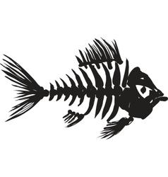 fish skeleton vector image vector image